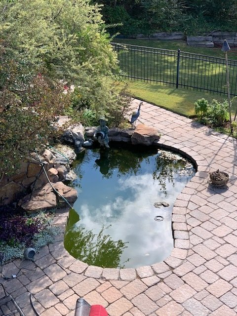 how to drain your pond